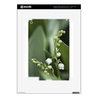 Lily of the Valley Flowers iPad 3 Decals