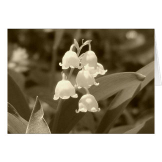 Lily of the Valley in Sepia Greeting Card