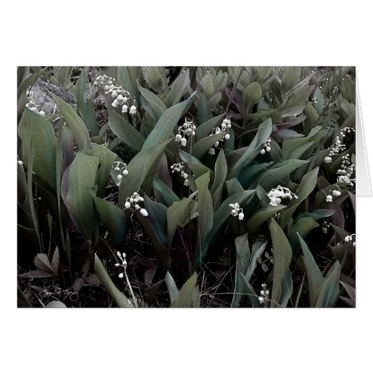 Lily of the Valley Mindscape 1 Card