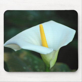 Lily of the valley mouse pads