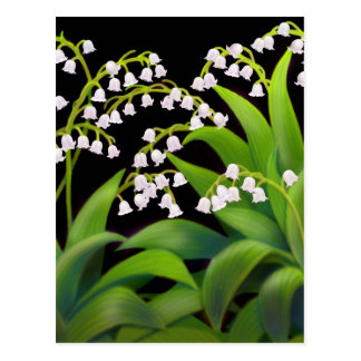 Lily of the Valley Postcards