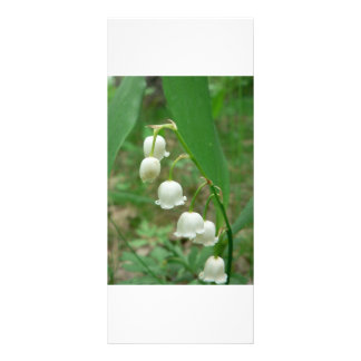 Lily-of-the-valley Rack Card
