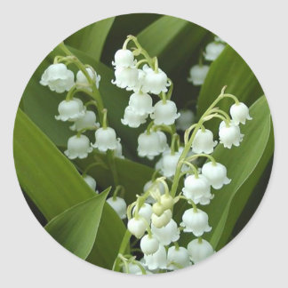 Lily Of  The Valley Classic Round Sticker