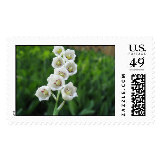 Lily of Valley Postage Stamp