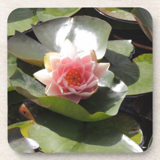 Lily Pad and Flower Drink Coaster