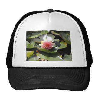 Lily Pad and Flower Hat