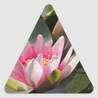 Lily Pad and Flower Triangle Sticker