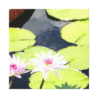 Lily Pad Canvas