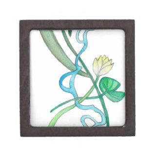 Lily Pad Gift Box