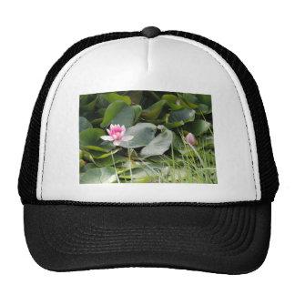 Lily Pad Mesh Hat