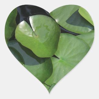 Lily Pad Heart Sticker