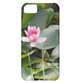 Lily Pad iPhone 5C Cover