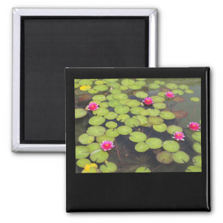 Lily Pad Magnet
