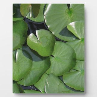 Lily Pad Plaque