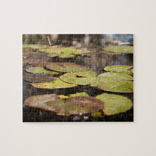 Lily Pad Puzzle