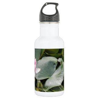 Lily Pad Water Bottle