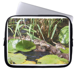 Lily Pads and baby ducks. Computer Sleeves