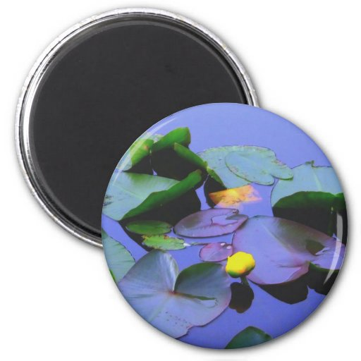 Lily Pads and flower Fridge Magnets
