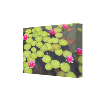 Lily Pads and Lotus Zen Canvas Print