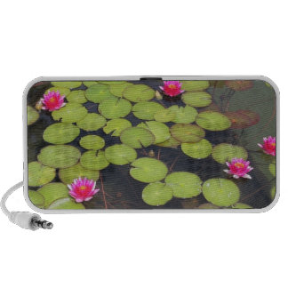 Lily Pads and Lotus Zen Doodle Speaker