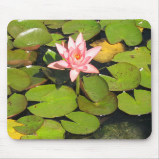 Lily Pads and Pink Flower Mousepad