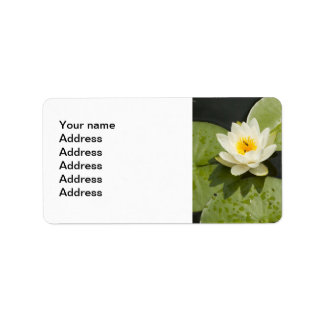 Lily Pads and White Lotus Flower Label