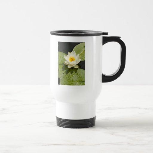 Lily Pads and White Lotus Flower Mug