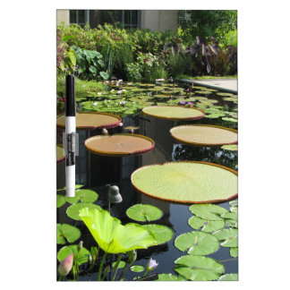 Lily Pads at Longwood Gardens Dry-Erase Boards