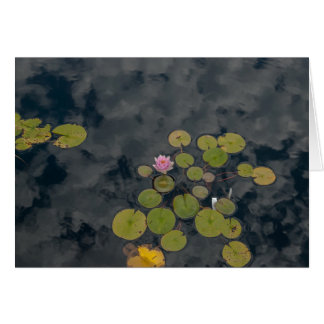 Lily Pads Card