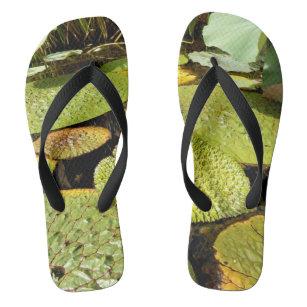 559aec27115363 Lily Pads Flip Flops