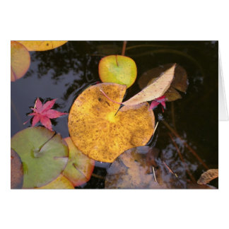Lily Pads in Autumn Card