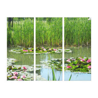 lily pads on a lake canvas print