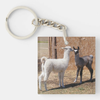 Lily & Patriot Single-Sided Square Acrylic Keychain