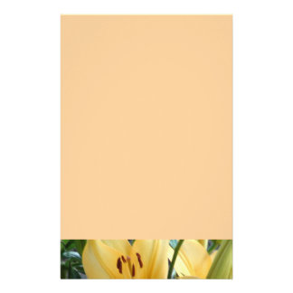 Lily Petals Stationery