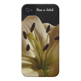 Lily Petals - Up Close and Personal iPhone 4 Covers