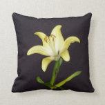 Lily Pillow - American Mojo Pillow