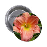 lily,pink pin
