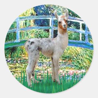 Lily Pond Bridge - Baby Llama Classic Round Sticker