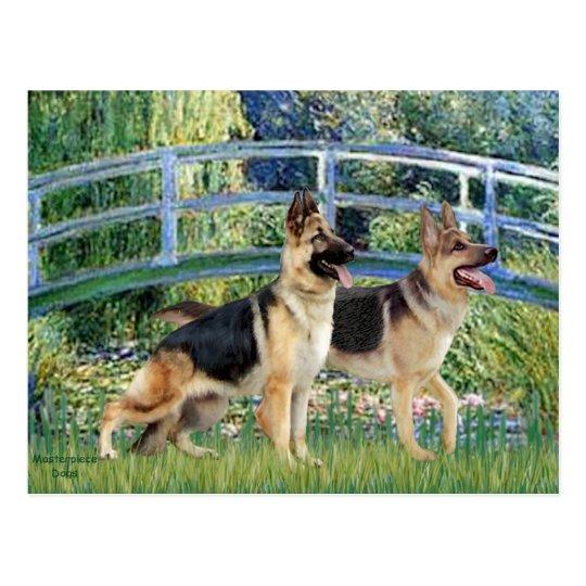 Lily Pond Bridge - Two German Shepherds Postcard