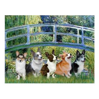 Lily Pond Bridge - Welsh Corgis (five) Postcard