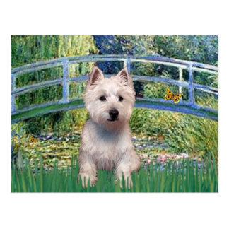 Lily Pond Bridge - Westie P Postcard