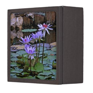 LILY POND WITH LAVENDER COLORED LOTUS BLOSSOMS PREMIUM KEEPSAKE BOX