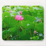 Lily Standing Tall Mouse Pad