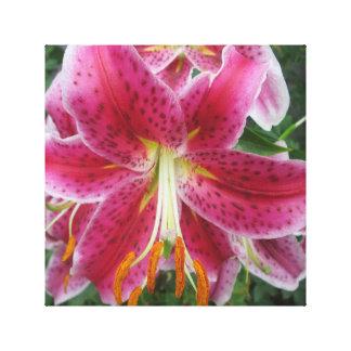 Lily Stargazer Purple Flower Stretched Canvas Print