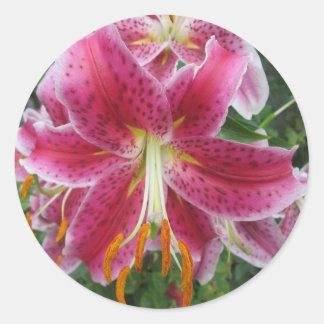 Lily Stargazer Purple Flower Classic Round Sticker