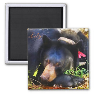Lily the Black Bear with Ribbons Magnet