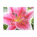 Lily the Pink Canvas Print from Beautiful Planet