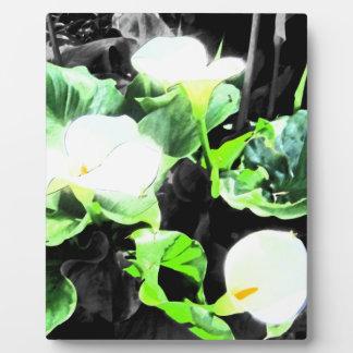 Lily Trio Plaques