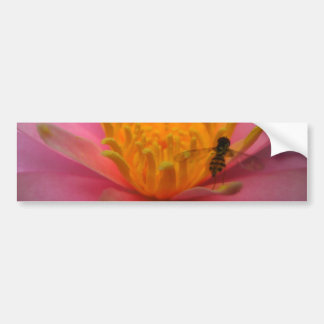 Lily with a Bee Bumper Sticker