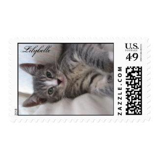 Lilybelle adoptó de un refugio sello